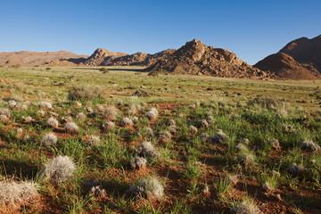 Landschaft mit Bergen Felsen und grüner Ebene Farm Namtib