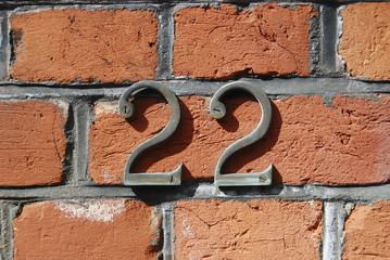 The number 22