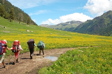 The group of tourists is on a mountain valley, Caucasus