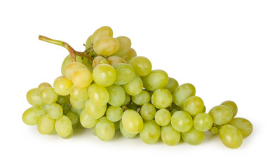 Branch of green grapes