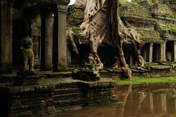 angkor - prheah khan temple, the ruins