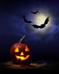 Halloween -  pumpkin and bats