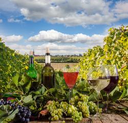 Fototapete - Grapes, wine glasses and  bottles in the vineyard