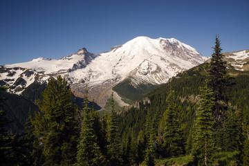 Trail Burroughs Mountain Cascade Range Mt. Rainier Background