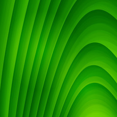 Abstract green background with striped texture