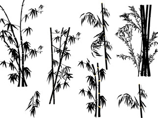 isolated bamboo plant silhouettes collection