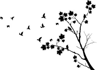 autumn tree silhouette with birds flying