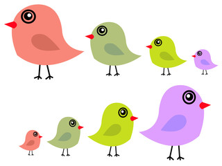Cute birds in vector
