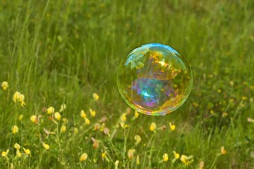 Soap bubble as background