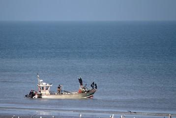barque de pêche traditionnelle en normandie,doris