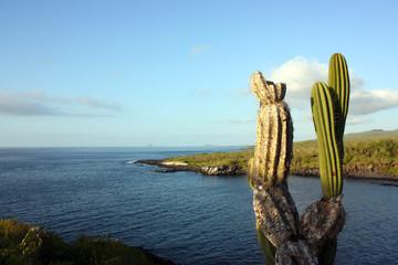 Isola San Cristobal, Galapagos, Ecuador