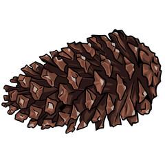 vector cartoon fir-cone