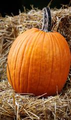 Pumpkin On Straw