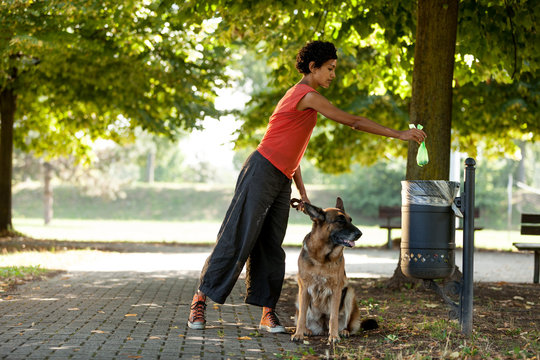 Keep clean the ambient by throwing away the dogs poo