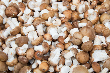 mushrooms on Market