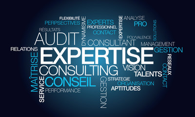 Obraz Expertise audit conseil consultant tagcloud mots illustration - fototapety do salonu