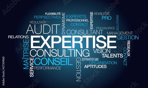 Expertise audit conseil consultant tagcloud mots illustration photo libre de droits sur la - Cabinet audit et conseil ...