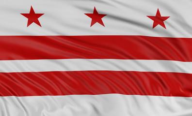 3D Washington  Flag