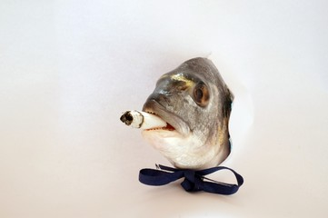 pesce con la sigaretta in bocca