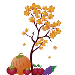 fruits and vegetables for thanksgiving day
