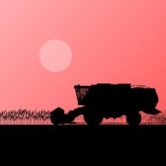 Agricultural combine harvester in grain field seasonal farming l