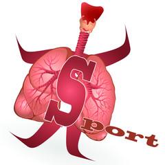Lungensport_COPD