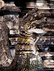 lion statue in thai temple