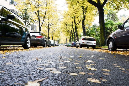 Straße Laub Autos