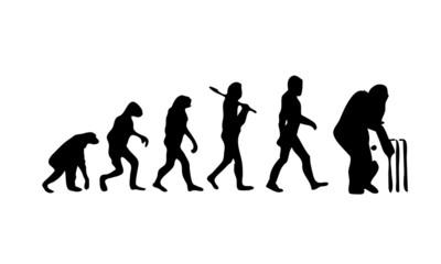 Evolution Cricket