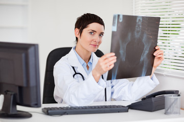 Professional female doctor holding a set of X-ray