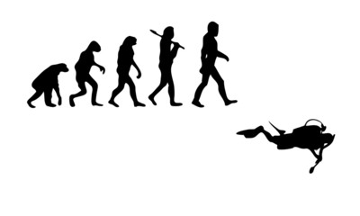 Evolution Diving