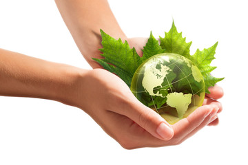 Wall Mural - environment conservation in your hands - usa
