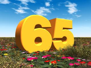 Die Zahl 65