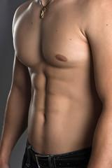 Muscular Male Torso - Stock Image