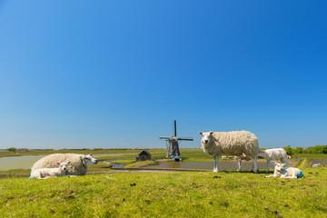 Sheep and windmill at Dutch island Texel Wall mural