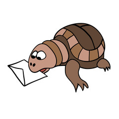 Turtle and  letter