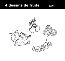 Fruits rouges : fraise, cerise, groseille, framboise