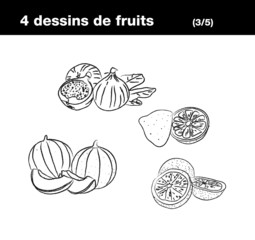 Fruits : melon, figue, citron, pamplemousse