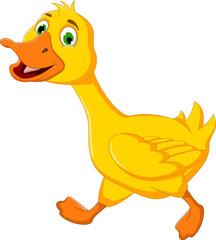 funny duck cartoon running