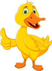 funny duck cartoon thumb up for you design