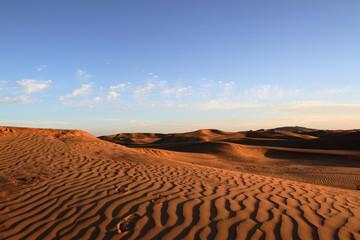 Photo sur Plexiglas Secheresse Desert
