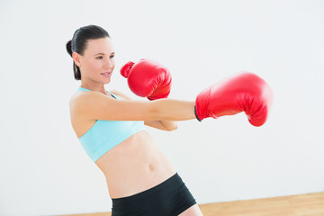 Determined boxer practicing in fitness studio
