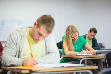 Young students writing notes in classroom