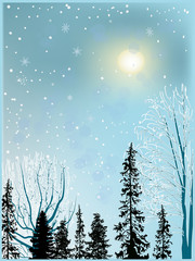 landscape with forest under snowfall