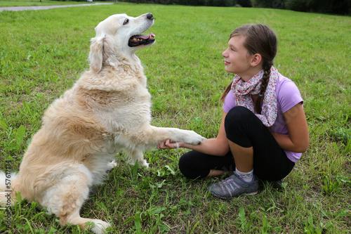 Puppy obedience training brisbane