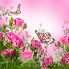 Wall Mural - Bouquet of delicate roses and butterfly, floral background