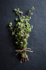 Buch of fresh marjoram