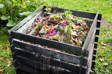 Универсальное удобрение компост – своими руками