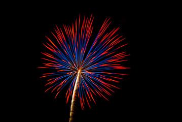 Patriotic Firework