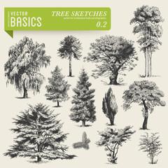 vector basics: tree sketches 2
